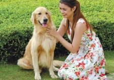 Parkmall - Best Pet-friendly Mall